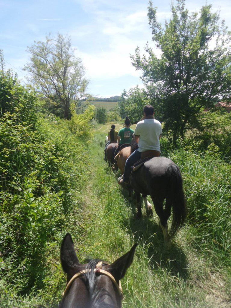 Passeggiata a cavallo a Cà del Monte